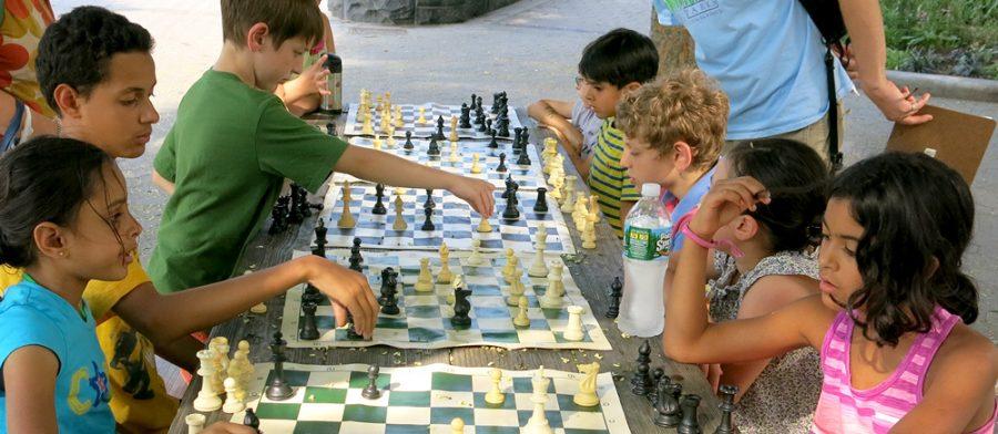 Шахматы-игра на развитие памяти и внимания для детей