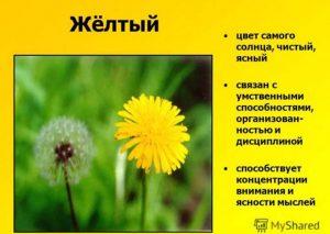 Значение жёлтого цвета