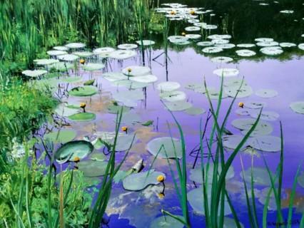 Задача про кувшинки на пруду