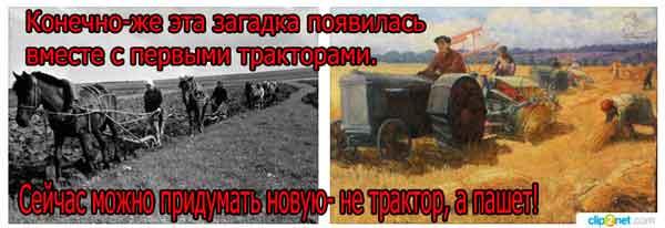 Какой конь сена не ест